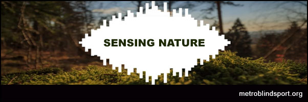 Sensing Nature when you're blind