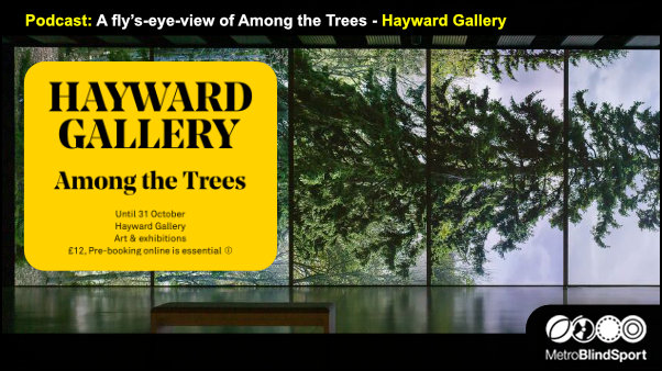 Podcast A fly's-eye-view of Among the Trees - Hayward Gallery