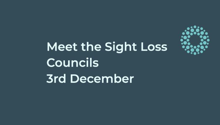Meet the Sight Loss Council 3 December
